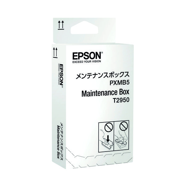 Epson WF-100W Maintenance Box C13T295000